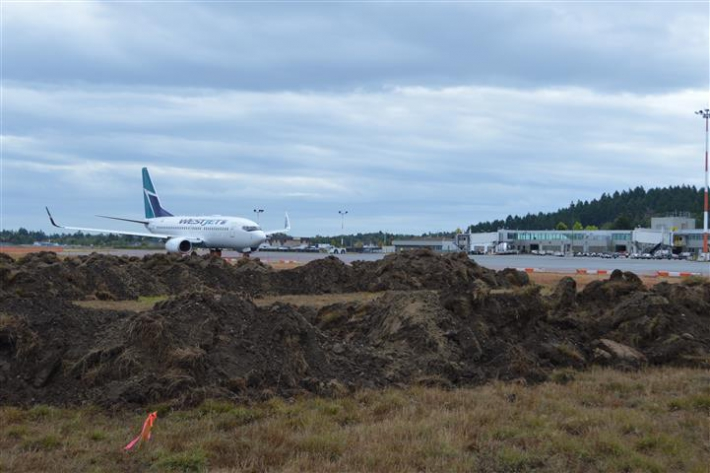 September 1 - WestJet taxiing past construction along Apron IV.