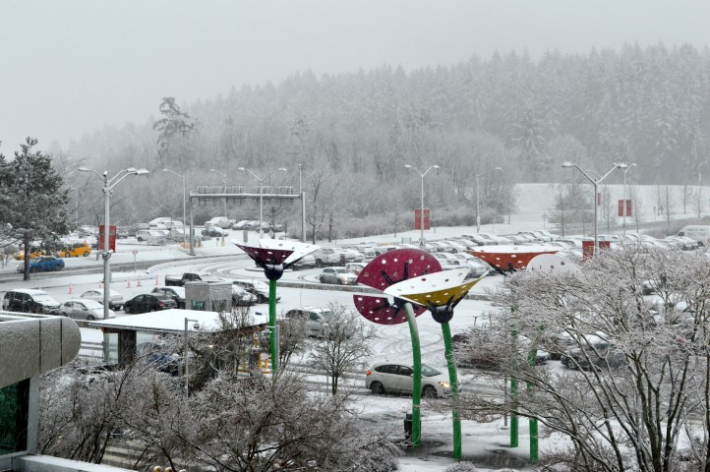 December - Dec 19 Snow at YY!